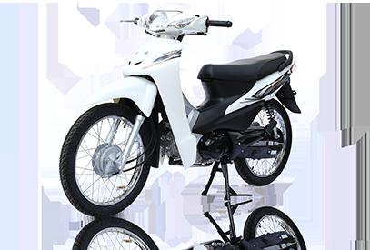 Xe máy xăng 50cc chính hãng